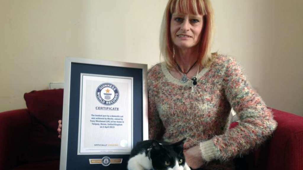 Kater Merlin auf dem Schoß seiner Besitzerin Tracy Westwood in Torquay. Foto: The Guinness World Records