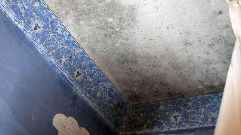 mieter der buchenallee leben zwischen schimmel und k lte salzwedel. Black Bedroom Furniture Sets. Home Design Ideas