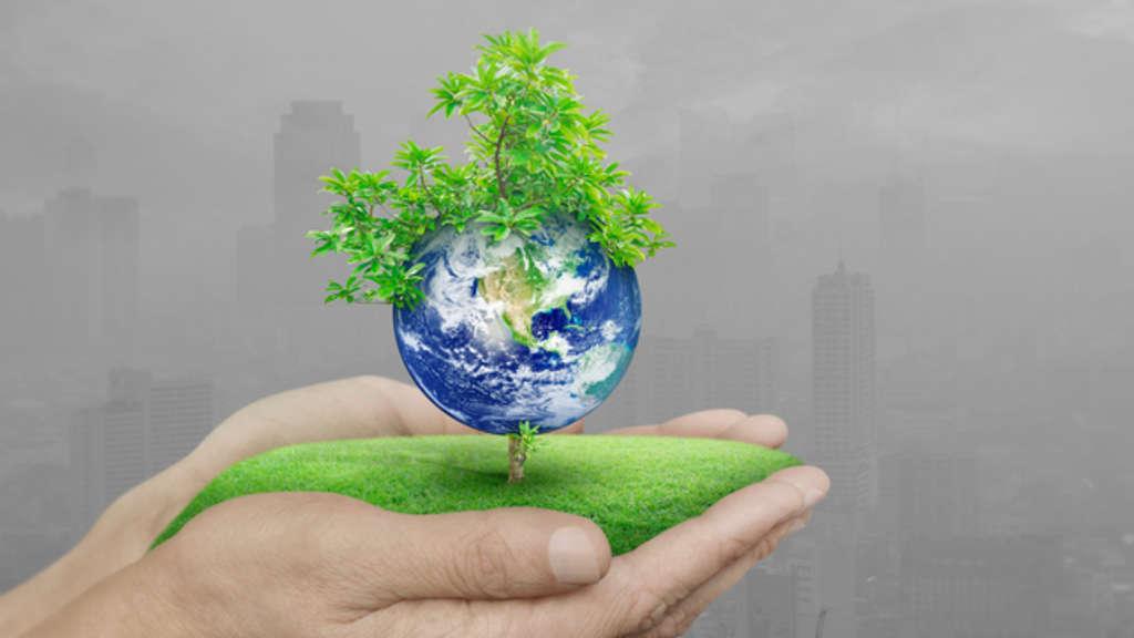 Tipps Fur Den Alltag Umwelt Schutzen Leicht Gemacht Wirtschaft