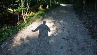 Laufen die Nackt durch Wälder Stab TEUTONI